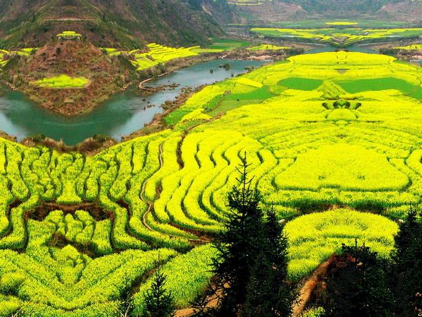 2, 上海---杭州---千岛湖—黄山---九华山---西递宏村