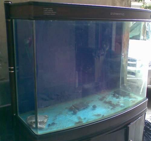 出售可丽爱铝合金框架隔断鱼缸GSA 1500 已售